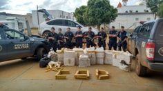 Quase 25 toneladas de drogas apreendidas neste ano em Goiás