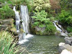The 15 Best Botanical Gardens in California - ProFlowers Blog