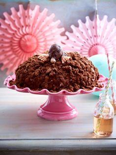 Was für ein niedlicher Kuchen: ein kleiner Maulwurf inmitten einer Kuppel aus feinen Rührteigkrümeln. Der Maulwurfkuchen - ein Genuss für die Augen und den Gaumen.
