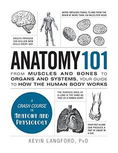 Anatomy From Muscles And Bones To Organs Systems Your Guide How The Human Body Works Adams By Kevin Langford