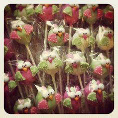 Owls for a first birthday!! #lilcutiepops #cakepops #owlcakepops #bakery #bakemeanoffericantrefuse #cuterthanacupcake #tasty #treats #dessert