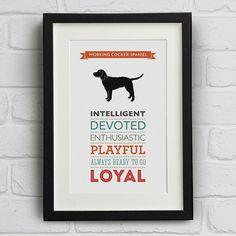 Working Cocker Spaniel Dog Breed Traits Print by WellBredDesign, £12.95