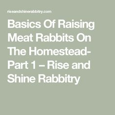 Basics Of Raising Meat Rabbits On The Homestead- Part 1 – Rise and Shine Rabbitry Raising Rabbits For Meat, Meat Rabbits, Giant Rabbit, Ranch Life, Hobby Farms, Homesteading, Farming Ideas, Kids, Young Children