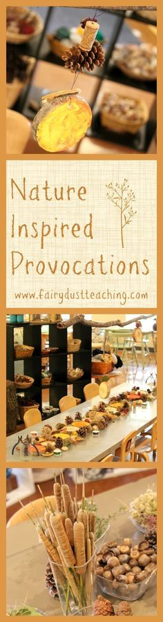 Get inspired with these Nature Inspired Provocations in a Reggio-Inspired school @ fairydustteaching.com!: http://fairydustteaching.com2015/10/nature_inspired_provocations/