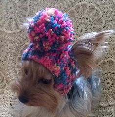 For dogs/pet hats/ hat for girl dogs/winter от LyudmilaHandmade