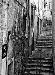 Beco dos Loios | Fernando Machado