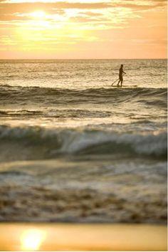 Avalon beach paddle boarder at sunrise | www.wallartprints.com.au #SydneyPhotos #AustralianLandscapePhotography