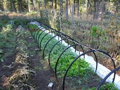 Our Subsistence Pattern: Extending The Growing Season