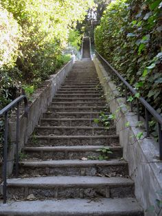 Hidden Hollywood Hills Stairs