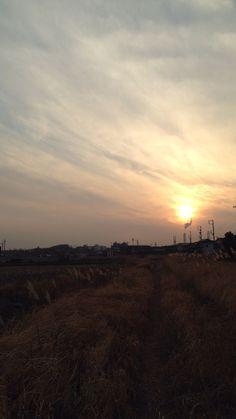 田んぼの散歩道、遠くに火力発電所の煙突
