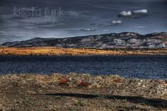 The Marge of Lake Laberge: HDR Image