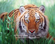Tiger in Grass, silk hand embroidered art painting, all handmade embroidery, silk thread picture, needle art, China Suzhou embroidery, Su Embroidery Studio