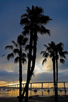 Coronado Palms Sunrise San Diego, California Coronado Bridge, Places To Travel, Places To Visit, Imperial Beach, San Diego Living, San Diego Houses, California Dreamin', Building Tattoo, Cities