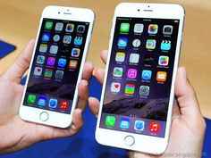 Apple Going To Launch Iphone 6 And Iphone 6 Plus In India on 17 October