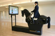 dressage horse simulator - why not? Or maybee a jumping simulator! You would never be able to get me off that thing :D