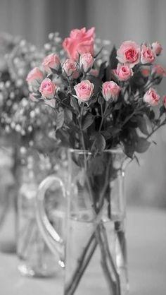 Beautiful Flower - #flowers iPhone wallpaper @mobile9