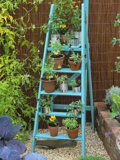 Ladder Perch for Pots of Kitchen Herbs  Placing small pots on an outstretched ladder is a good way to maximize a small space. Especially good for pots of herbs or plants that trail.