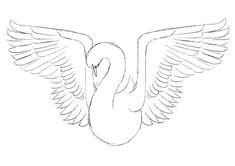 Photoshop tutorial: Create a beautiful bird artwork - Digital Arts