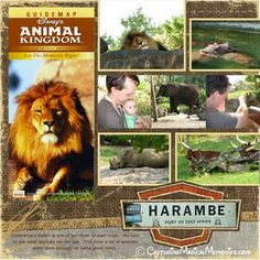 Kilamanjaro Safari Animal Kingdom Layout (# disney world)