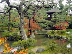 Great Chinese-style garden for resourcing oneself
