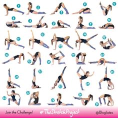 There are a lot of yoga poses and you might wonder if some are still exercised and applied. Yoga poses function and perform differently. Each pose is designed to develop one's flexibility and strength. Dance Stretches, Stretches For Flexibility, Flexibility Workout, Cheerleading Flexibility Stretches, Gymnastics Stretches, Stretch Challenge, Workout Challenge, Thigh Challenge, Plank Challenge