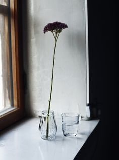 Glass of water. Suvi sur le vif   Lily.fi