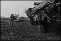 Zaire, 1994 - Hutu refugees were struck by cholera and buried in mass graves james nachtwey