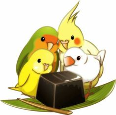 Grass jelly ~ birds