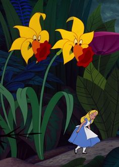 alice in wonderland flowers - Google Search