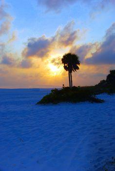 Sarasota Florida maybe a retirement home??