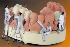 Dental lab work takes a team approach! Dental Humor, Dental Hygiene, Dental Health, Oral Health, Dental Pictures, Cute Tooth, Dental Technician, My Dentist, Dental Laboratory