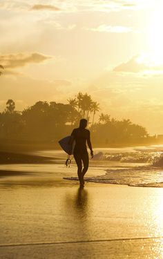 Surf and Skate : Foto