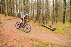 Featured Ride: Darling Hill Loop at Kingdom Trails in Vermont