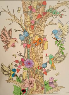 Colored Pencils Adult Coloring Books Cards Pintura Flowers Colouring In Crayons
