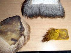 Coloration manuelle du chevreuil
