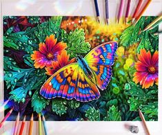 Colorful Butterfly Drawing, Butterfly Art, Colorful Drawings, Pencil Colour Painting, Colored Pencil Artwork, Amazing Drawings, Realistic Drawings, Pencil Drawings Of Animals, Insect Art