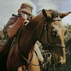Cavalry - South African Bush War