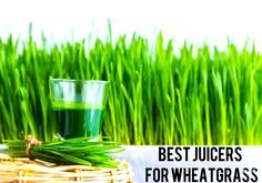 What are the benefits of a cold press juicer and why are they superior to centrifugal juicers? Learn what a cold press juicer is, how they work and why they make a healthier juice. Discover the many benefits of cold pressure juicers. Best Smoothie Recipes, Good Smoothies, Wheatgrass Juicer, Cold Press Juicer, Top 10 Home Remedies, Natural Remedies, Detox Juice Cleanse, Best Juicer, Coconut Oil