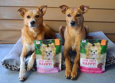 ZoePhee: ZoePhee Reviews: Happy Wraps on Tasty Tuesday