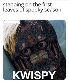 Stepping on the first leaves of spooky season KWISPY - iFunny :) Really Funny Memes, Stupid Funny Memes, Funny Relatable Memes, Hilarious, Funny Stuff, Funny Images, Funny Pictures, Spooky Memes, Creepy Meme