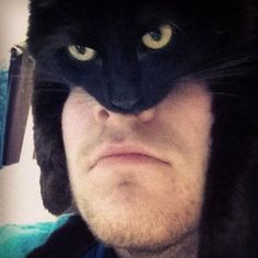 I Am The Catman..... LOL OMG I'm still laughing at this | Humor and Funny Pics