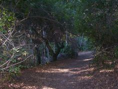 Hike Holy Jim Falls - Trabuco Canyon, Orange County, CA