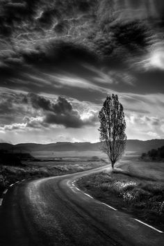 Black and white photography beautiful nature