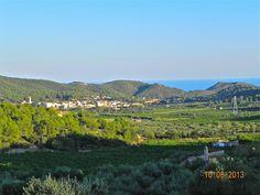 Vinya , Mar i Muntanya , abraçant les comarques del Tarragonès, el Baix Penedès i l' Alt Camp.