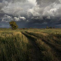 photo: unpretentious landscape   photographer: Igor Lihovidov   WWW.PHOTODOM.COM