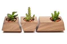 There's a neat addition to your interior design available in the form of Boxcar Succulent Planters that will make your windowsill stand out, of course if you're one of those tiny succulent plants aficionados. The Boxcar Succulent Planters set contains of three units hand-made of walnut with robin egg blue accents. Each of them comes with a stainless-steel insert for …