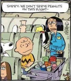 Peanuts Cartoon, Cartoon Jokes, Funny Cartoons, Funny Jokes, Hilarious, Peanuts Gang, Cartoon Characters, Peanuts Characters, Peanuts Comics