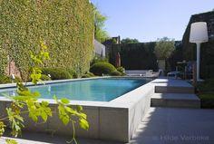 http://www.demooistezwembaden.be/project/buitenzwembad-skimmer-zwembad-in-tuin/