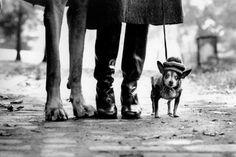 Felix, Gladys and Rove, Nova Iorque, 1974 - Elliott Erwitt, fotografo de fotojornalismo e e documentários francês. Nasceu no dia 26 de Julho de 1928 em Paris.