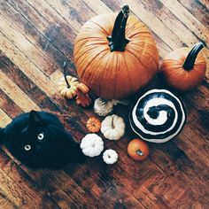 fallen leaves, pumpkin pies and cozy weather : Photo